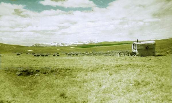Sheep Wagon, Lincoln County.