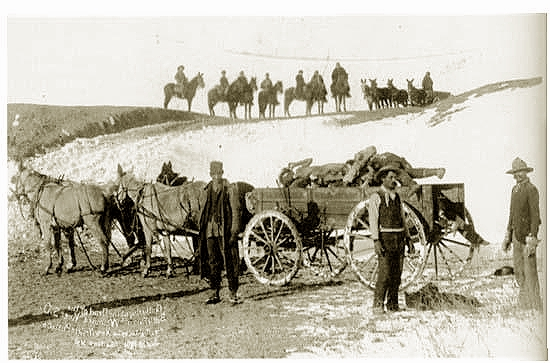 555df60476 Frozen bodies being removed at Wounded Knee.